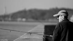 Fisherman (patrick_milan) Tags: fisherman portrait port harbourg brest black glass hat cap