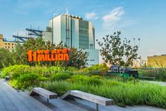 """11 Million pt2"" (So Fluid) Tags: landscape landscapephotography newyorkcity manhattan park highlinepark nature cityscape morning sofluid canon sigma eastcoast east les buildings structure skyscrappers"