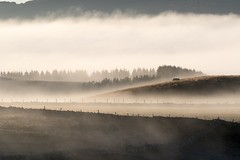 Lever du soleil, Marchastel, Lozére (lyli12) Tags: leverdesoleil aubrac lozère paysage landscape brume mist ciel france nikon languedocroussillon célinelajeunie