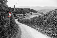 James Ravilious Way 41/52 (rmrayner) Tags: henricartierbresson jamesravilious devon lanes blackandwhite dartmoor landscape countryside rural 4152 52weeksthe2018edition hedges farmland field selectivecolourpop
