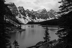 Moraine Lake (D. Koyanagi) Tags: 2011 24105mmf40l alberta banffnationalpark blackandwhite canada canon canon5dmk1 landscape morainelake