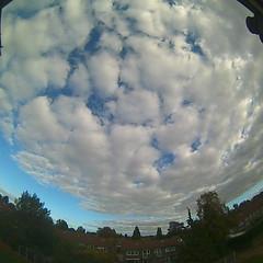 Bloomsky Enschede (October 22, 2018 at 03:48PM) (mybloomsky) Tags: bloomsky weather weer enschede netherlands the nederland weatherstation station camera live livecam cam webcam mybloomsky