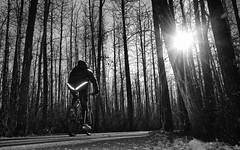 Carpe Diem (VanveenJF) Tags: fall biker stalbert alberta fujifilm x100t dark sunsetting reflection glare lens road trees