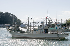 Squid fishing boat (takashi_matsumura) Tags: squid fishing boat vessel mihonoseki matsue shimane japan nikon d5300 いか 釣り 漁船 美保関 松江 島根 ngc sigma 1750mm f28 ex dc os hsm