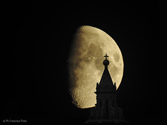 MoonFlorence