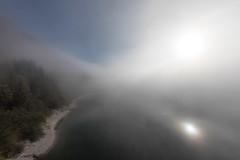 sun vs. fog (dadiolli) Tags: sylvenstein sylvensteinsee sylvensteinspeicher fog morning nebel morgennebel light licht bavaria bayern