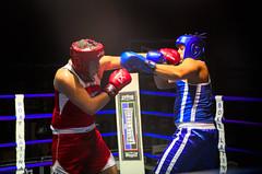 37009 - Hook (Diego Rosato) Tags: boxe boxing pugilato boxelatina ring match incontro rawtherapee nikon d700 2470mm tamron pugno punch hook gancio