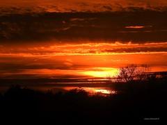 Sunset At The Park (Anton Shomali - Thank you for over 2 million views) Tags: october trees dusk sunset red light clouds sky park sun sunsetatthepark