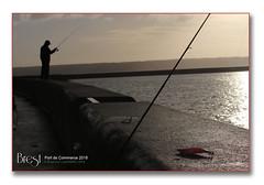 Brest, port de commerce 2018 - La pêche à la lign (porte-plume) Tags: brest port