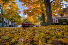 Autumn in Maple City (tquist24) Tags: goshen hdr indiana nikon nikond5300 outdoor autumn car cars city color colorful fall flag geotagged goldenhour house houses leaf leaves sky street tree trees unitedstates