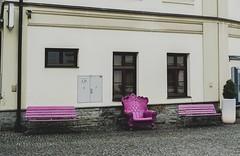 Wzgórze zamkowe. (xoxosandraaa) Tags: budynek róż wzgorzezamkowe polskicieszyn cieszyn polska poland