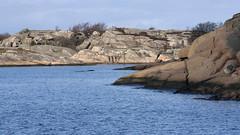 Hvalerkysten 1.7, Østfold, Norway (Knut-Arve Simonsen) Tags: vesterøy hvaler norge норвегия norway noruega norwegen norvegia norvège नॉर्वे 挪威 ノルウェー நோர்வே νορβηγία sydnorge sørnorge østlandet glomma oslofjorden østfold norden scandinavia скандинавия э́стфолл фре́дрикстад гло́мма ослофьорд vann hav benk gress tre hytte brygge water sea tree cottage pier banco de mar agua hierba árbol cabaña muelle wasser meer hütte acqua molo mare papper