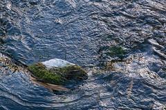 Glenstrup Sø - Sten i vand 2 (Walter Johannesen) Tags: glenstrup sø landskab eftermiddag vand