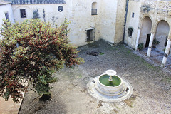 PATIO PALACIO DE LOS RIBERA SIGLO XVI (CARLOS CALAMAR) Tags: palacio palace cadiz bornos andalucia