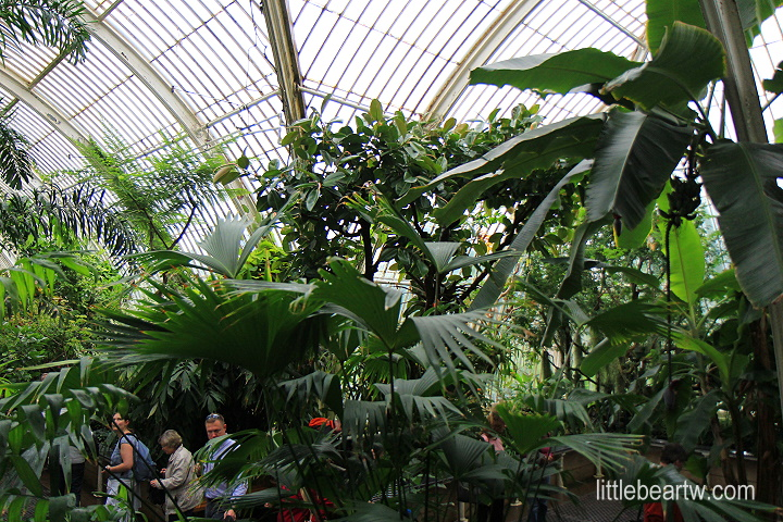 邱園Kew Gardens-16