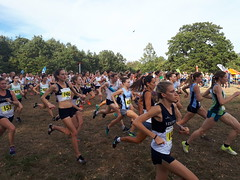 20181013_135434 (robertskedgell) Tags: vphthac vph4ever running xc metleague claybury 13october2018