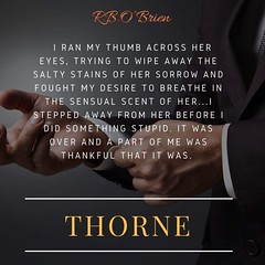 From #TABB #PimpPost ❤´¨) ¸.•´¸.•⭐´¨) ¸.•❤'¨) (¸.•´ (¸.•`❤Thorne The Complete Series (Volumes 1-3) By Rosemary RB O'Brien (sbproductionsteaseraddict) Tags: book promotions indie authors readers