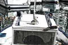 la mascota (candi...) Tags: barca pesca puerto oso osodepeluche amuleto mascota sonya77 agua escoba