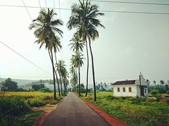 There's more to Goa than just beaches! #green #countryside #villages #parra #northgoa #goa #travel #india #roads #goapics #goaphotos #goavibes #instatravel #instagoa #goatravel #travelling #roadtrips #highways #outdoors #afternoon #vacations #holidays #tr (VaibhavSharmaPhotography) Tags: theres more goa than just beaches green countryside villages parra northgoa travel india roads goapics goaphotos goavibes instatravel instagoa goatravel travelling roadtrips highways outdoors afternoon vacations holidays travelblog