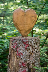 Heart (Peter Goll thx for +12.000.000 views) Tags: 2018 schwarzwald urlaub erlangen germany forrest wald baum tree natur nature heart herz wood holz