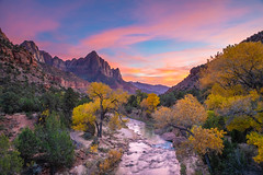 Zion National Park Autumn Sunset (Tim Miley) Tags: landscape zion nationalpark autumn fall colorful mount blue river purple sunset nature