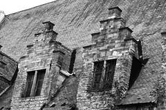 Roof. (wimjee) Tags: nikond7200 nikon d7200 afsdx1680mmf284eedvr belgië gent silverefexpro2 blackwhite zwartwit monochrome niksoftware