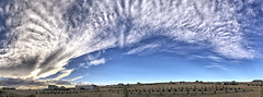 Cloudscape: FROPA (northern_nights) Tags: cloudscape skyscape weather frontalpassage clouds sky cheyenne wyoming pano panorama fropa