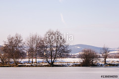 frozen river shore (F Csaba) Tags: mures river season shore trees vegetation winter frozen snow landscape cold day nature relaxation sky chilly december field ice icy outdoor calm freeze quiet temperature romania covered color white brown blue friss csaba