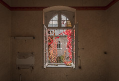 DSC_6635-HDR (Foto-Runner) Tags: urbex lost decay abandonné carmel couvent automne