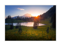 Tipspp Lake (andreassofus) Tags: tipsoolake mtrainier washington mtrainiernationalpark lake mountain mountainscape landscape grandlandscape nature water trees woods forest sun sunset sunlight sky evening field wildflower flowers america usa travel travelphotography summer summertime
