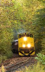 OC&T 3568 - Oil Creek State Park (Wheelnrail) Tags: oil creek titusville pennsylvania train trains railroad rail road rails mlw alco m420w oct 3568 locomotive diesel fall autumn yellow