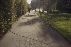 the grass is greener (m_travels) Tags: filmphotography street 35mm urban city sanfrancisco sf плёнка analog kodakektar100