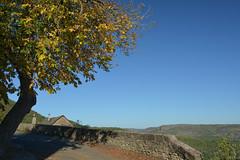 La place du marronier (Michel Seguret Thanks for 13.6 M views !!!) Tags: france aveyron rouergue michelseguret nikon d800 automne fall pro