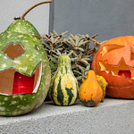 Halloween Kürbisse mit Grimassen vor einem Haus thumbnail