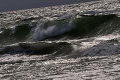Kurshskaja_Kosa_Baltika_2011_06a_32 (Бесплатный фотобанк) Tags: balticsea coast curonianspit kaliningradregion landscape nature russia wave калининградскаяобласть куршскаякоса балтийскоеморе берег волны пейзаж природа россия море