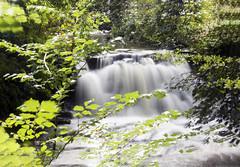 Harden Beck Waterfall (Kingsley_Allison) Tags: waterfall westyorkshire water beck river stream nikon nikond7200 harden bingley goit