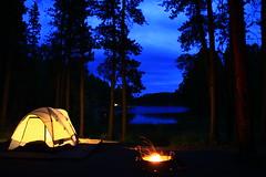 Campsite at Center Lake (ET's Photo Home) Tags: blackhills southdakota roadtrip centerlake camping camp night trees pines lake water nature