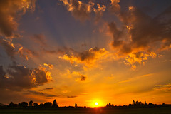 Sunset in July (echumachenco) Tags: sunset evening sky cloud sun orange pink july summer outdoor tree silhouette freilassing hofham bavaria bayern germany deutschland nikond3100 skyline dusk sundown