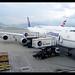 B747-8i | Lufthansa | D-ABYG | HKG