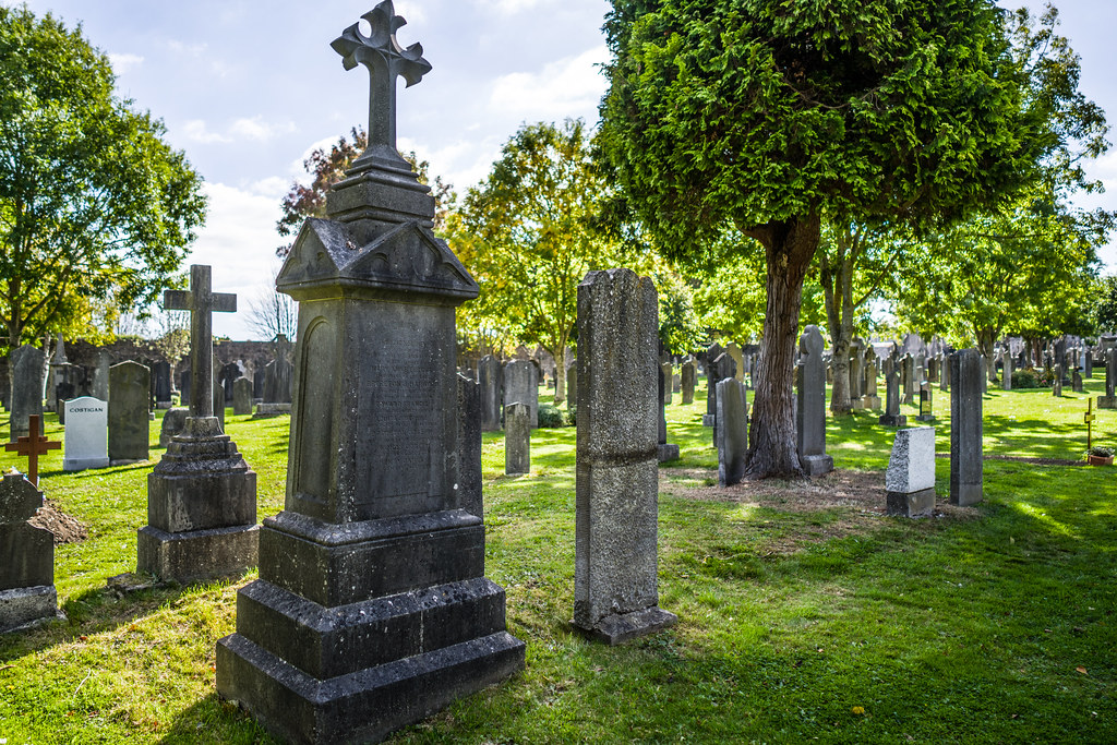 SEPTEMBER 2018 VISIT TO GLASNEVIN CEMETERY [ I USED A BATIS 25mm LENS AND I EXPERIMENTED WITH CAPTURE ONE]-144747
