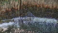 Waterfall (JLM62380) Tags: villa taranto waterfall cascade eau water italy garden botanic flowers pond pallanzavilla pallanza