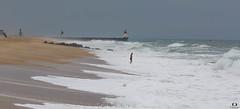 Affronter les vagues.. face the waves.. Capbreton ( Landes) (Didier Gozzo) Tags: ngc landes capbreton canon sky ciel océan outdoor sea mer wawes vagues