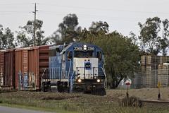 Sunday Special (lennycarl08) Tags: california californianorthernrr emd railroad trains