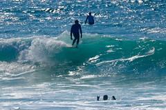 IMG_6912 (palbritton) Tags: surf surfing surfer singlefin longboard longboardsurfing surfcontest