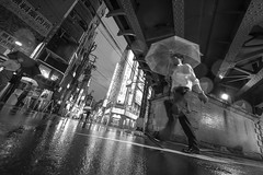 CITY RAIN (ajpscs) Tags: ©ajpscs 2018 ajpscs japan nippon 日本 japanese 東京 tokyo city people ニコン nikon d750 tokyostreetphotography streetphotography street seasonchange summer natsu なつ 夏 shitamachi night nightshot tokyonight nightphotography citylights tokyoinsomnia nightview dayfadesandnightcomesalive alley strangers urbannight attheendoftheday urban othersideoftokyo walksoflife urbanalley tokyoscene anotherday streetoftokyo sidewalk wetnight rainynight rain ame 雨 雨の日 whenitrains 傘 anotherrain badweather whentheraincomes cityrain tokyorain noplaceforthesun umbrella whenitrainintokyo arainydayintokyo nosuntoday