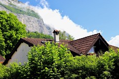 The Alps (Grenoble, France) (Haytham M.) Tags: france grenoble alps leaves tree trees tiles roof bricks chimney cozy mountain house