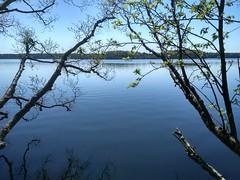 IMG_20180512_132127_HDR (Rustam Bikbov) Tags: горовалдайскоеозеро озеро май 2018 may lake