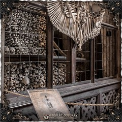 There will be even more history explained in printed pamphlets and through an audio guide inside the Ossuary. We highly recommend you take a listen and enjoy it all! . (To be continued...) . 💀Turn on post notifications, click link in BIO to follow a (Sedlec Ossuary Project) Tags: sedlecossuaryproject sedlec ossuary project sedlecossuary kostnice kutnahora kutna hora prague czechrepublic czech republic czechia churchofbones church bones skeleton skulls humanbones human mementomori memento mori creepy travel macabre death dark historical architecture historicpreservation historic preservation landmark explore unusual mechanicalwhispers mechanical whispers instagram ifttt