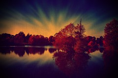 The evening on the lake ... (Julie Greg) Tags: nature nautre lake landscape trees water colours texture sky park england kent motepark