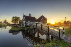 Amanece entre molinos (tsanchezruiz) Tags: nederlands sunrise bridge water sun holland zaanseschans mill grass molino holanda fog amazing